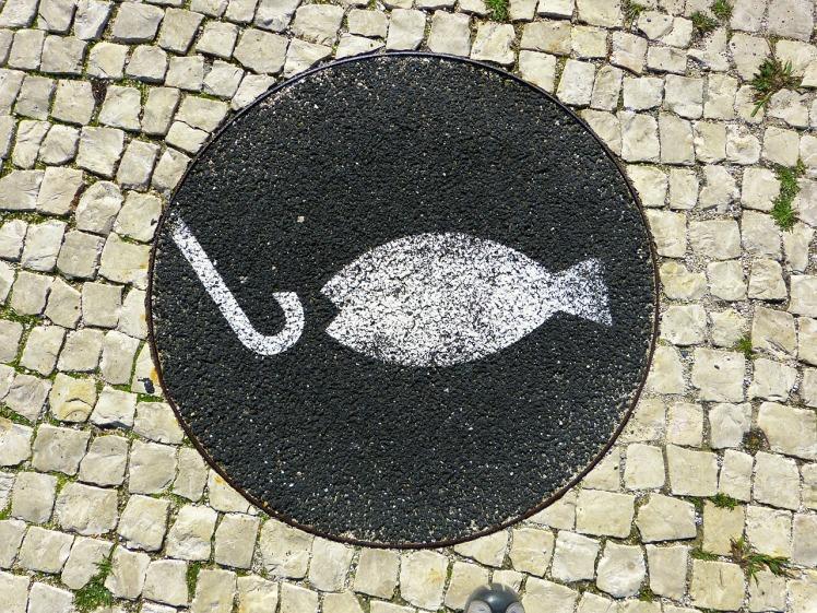 fish-211501_1280